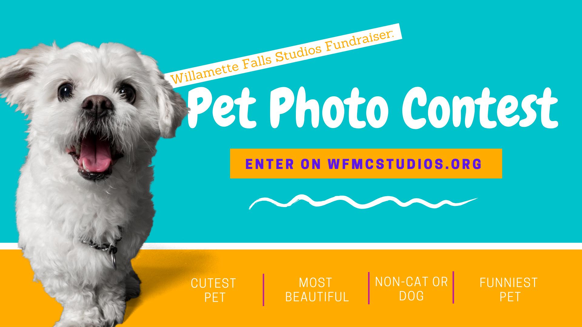 Pet Contest Finale